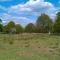 حديقة ريتشموند
