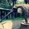 حديقة حيوان برشلونة