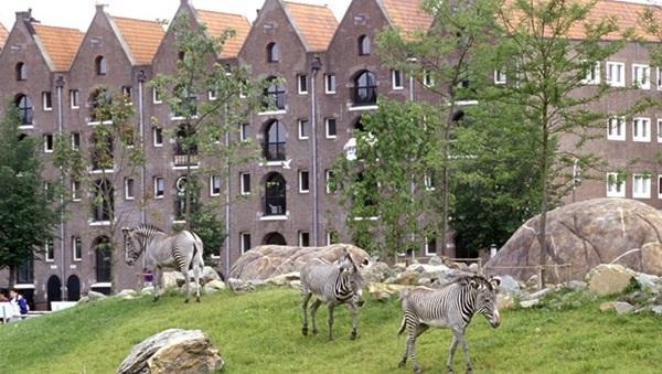 حديقة حيوان أرتيس أمستردام صور | موقع | عنوان | احداثيات | أسعار