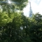 برج التلفزيون كامزيك