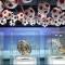 متحف نادي بايرن (عالم المغامرات)