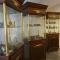 متحف براتيسلافا الأثري