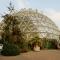 الحديقة النباتية في جامعة دوسلدورف
