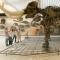 متحف سنكينبيرج للتاريخ الطبيعي